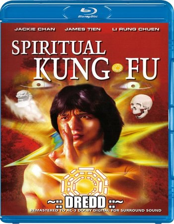 Spiritual Kung Fu (1978) Dual Audio 300MB