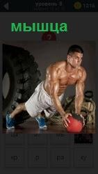 Мужчина с голым торсом занимается спортом накачивая мышцы, упираясь руками в мячик на полу