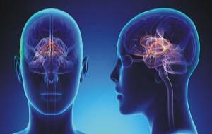 improving your brain memory