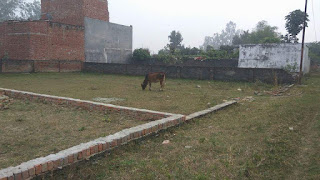 Gda plot in Taramandal Gorakhpur, Gda Plot in Gorakhpur, Land rate in Gorakhpur, Plot in Taramandal Gorakhpur, Plots in Taramandal Gorakhpur, Residential Land for Sale in Taramandal Gorakhpur