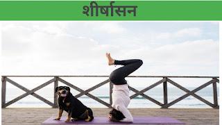 Yoga for Hair Growth in hindi/ शीर्षासन (Sirsasana)