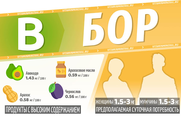 Бор для организма — инфографика