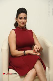 Telugu Tollywood Anchor Manjusha Pos in Red Short Dress  0051.JPG