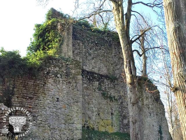 Château d'Anthon