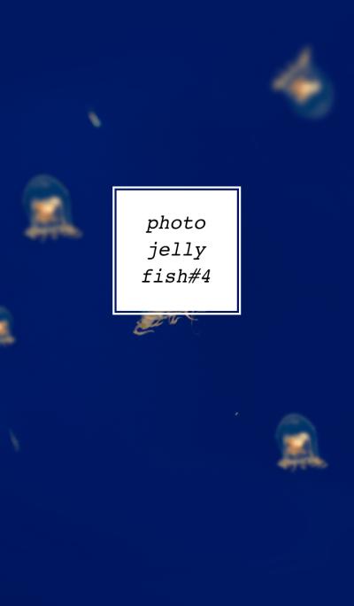 PHOTO-JELLYFISH#4