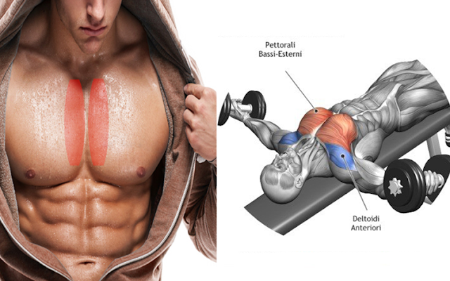 Muscle Day : Exercises To Target Inner Pecs