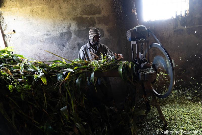 Grinding Corn Volunteering in Kenya with Freedom Global