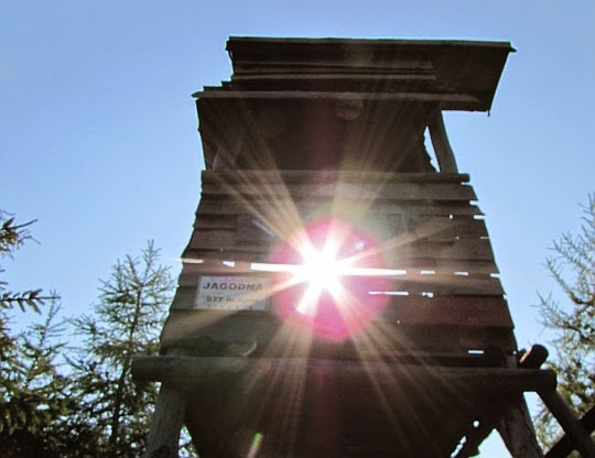 Jagodna (niem. Heidelberg, 977 m n.p.m.) - najwyższy szczyt Gór Bystrzyckich.