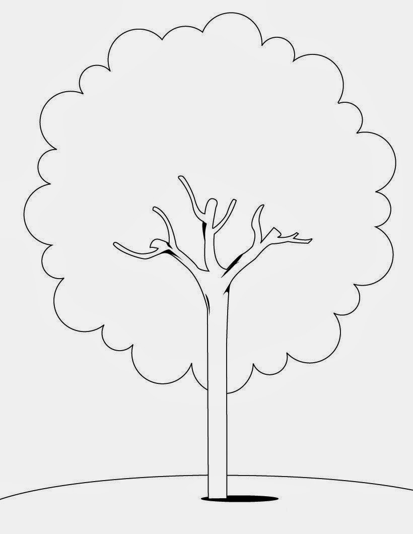 free coloring pages of palm branch - Palm Tree Branches Coloring Pages