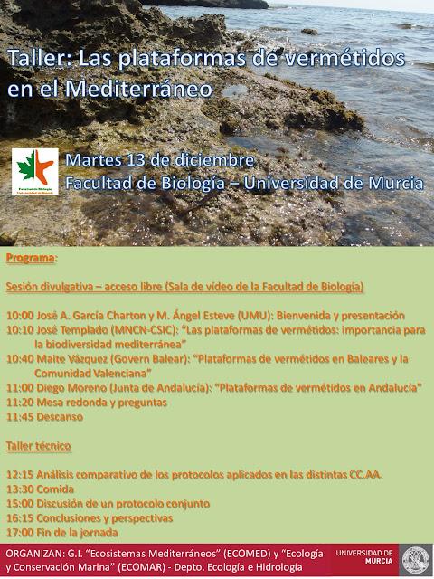 Jornada sobre la importancia de las plataformas de vermétidos para la biodiversidad del Mediterráneo.