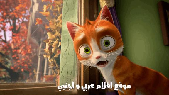موقع عربي رائع لمشاهدة و تحميل الافلام العربية و الاجنبية!