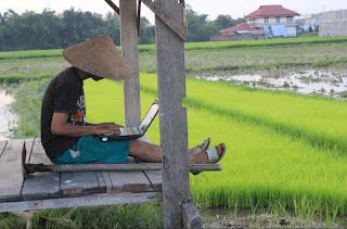 Usaha Yang Menguntungkan di Desa