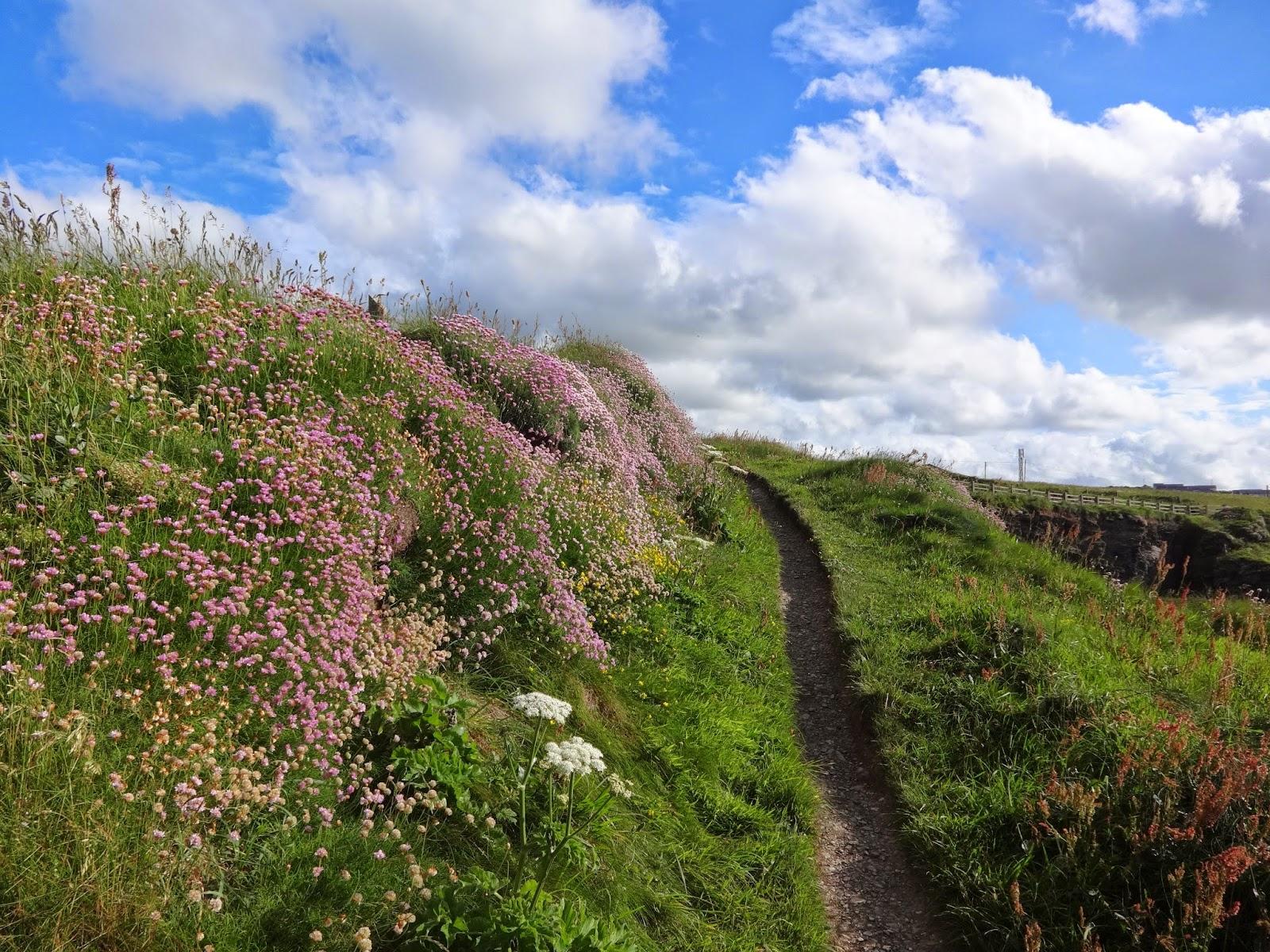 Grevskabet Cornwall En Pilgrimsfaerd Langs Kystens Perler I