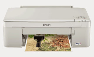 H5N1 novel from breed of the inkjet printers built related to Maximum Economy Epson ME 320 Drivers Download for Windows together with Mac