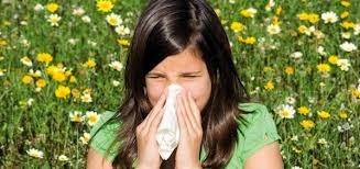 Makanan Super Anti Alergi