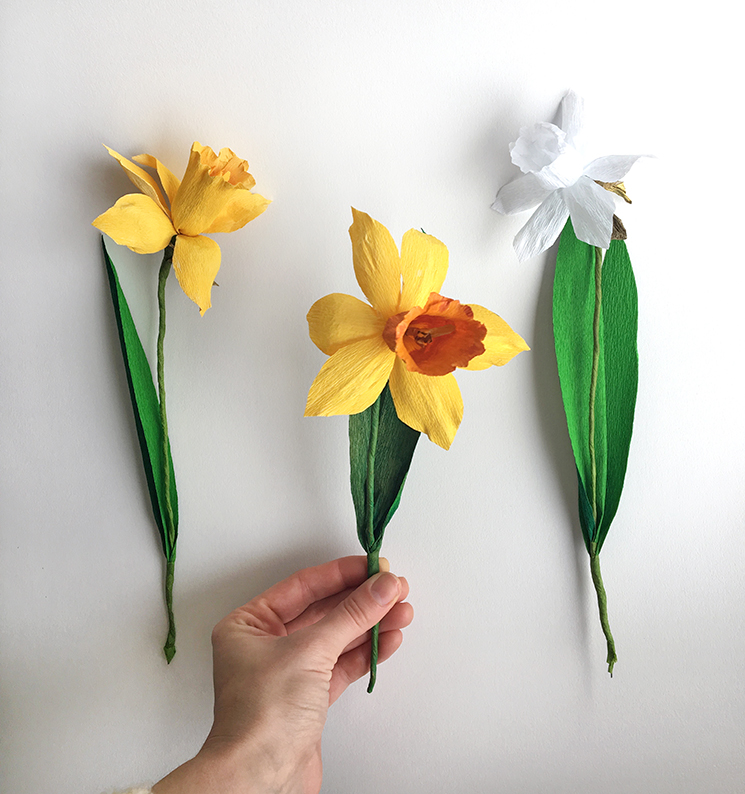 Collagepdx Diy Crepe Paper Flowers