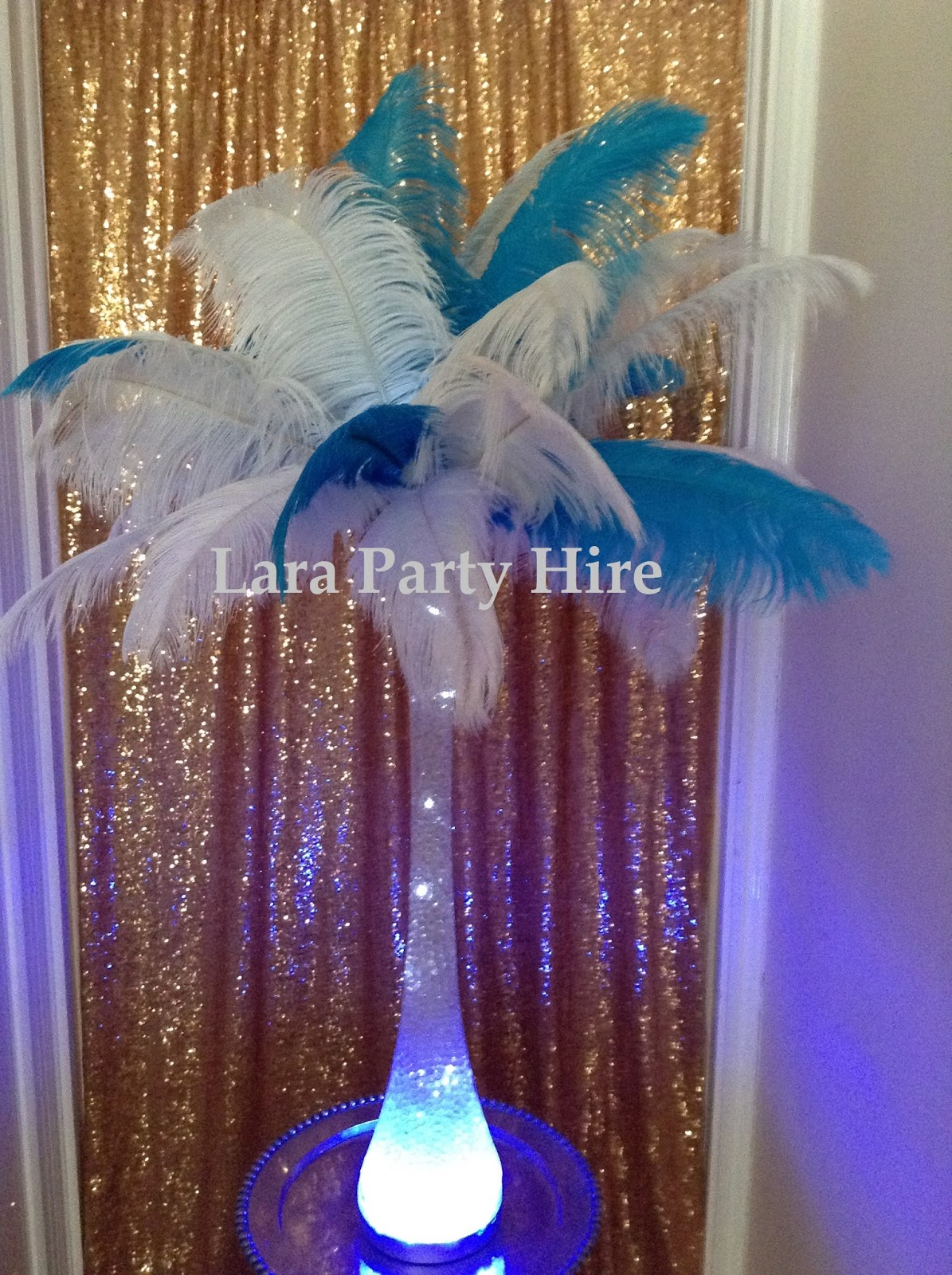 Lara party hire ostrich feather centerpieces