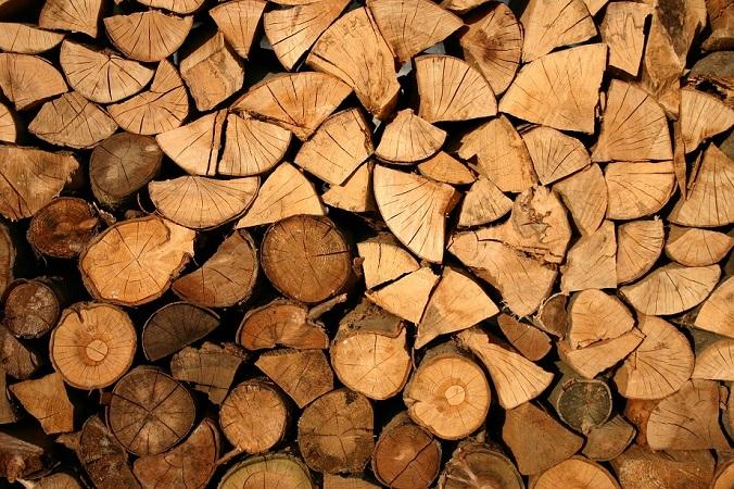 ch民「杉と檜を伐採して使えばよかったのに」東京五輪会場に使われている木材が違法伐採されたもの!?(まとメテオ@chまとめ)