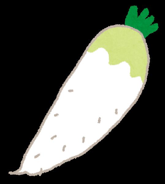 大根のイラスト野菜 かわいいフリー素材集 いらすとや