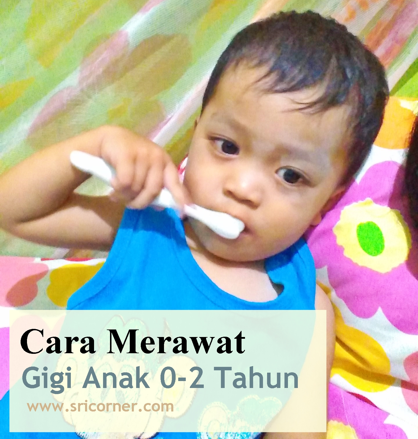 Cara Merawat Gigi Anak Usia 0 2 Tahun Sri Corner