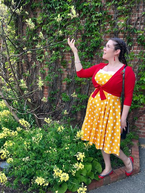 pinup girl clothing netti dress