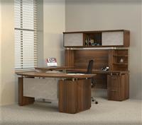 Ergonomic Executive Interior
