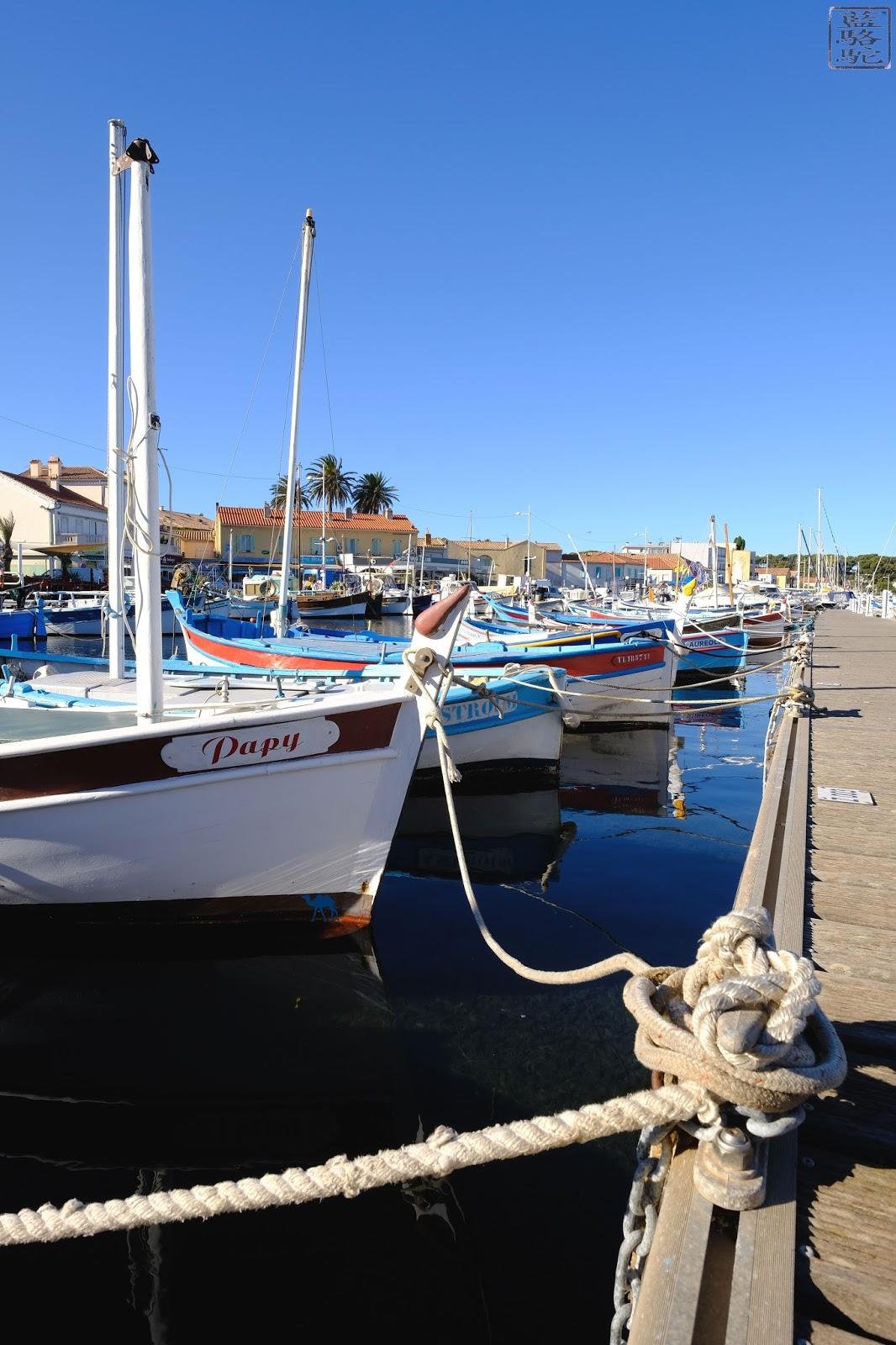 Le Chameau Bleu - Blog Voyage Var - Port du Brusc - Var