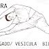 El Shiatsu es una terapia manual de origen japonés -  por Lola y Carolin
