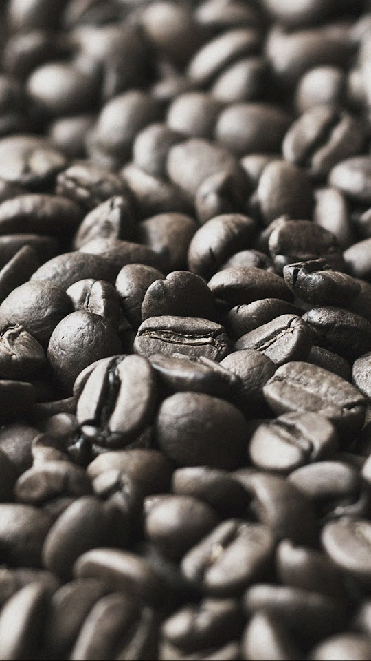 Brown Coffee Beans Close Up Macro Focus  Galaxy Note HD Wallpaper