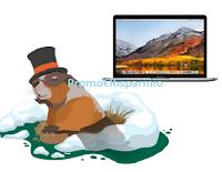 Logo Concorso Marmotte: con Innovet vinci gratis MacBook Apple e non solo