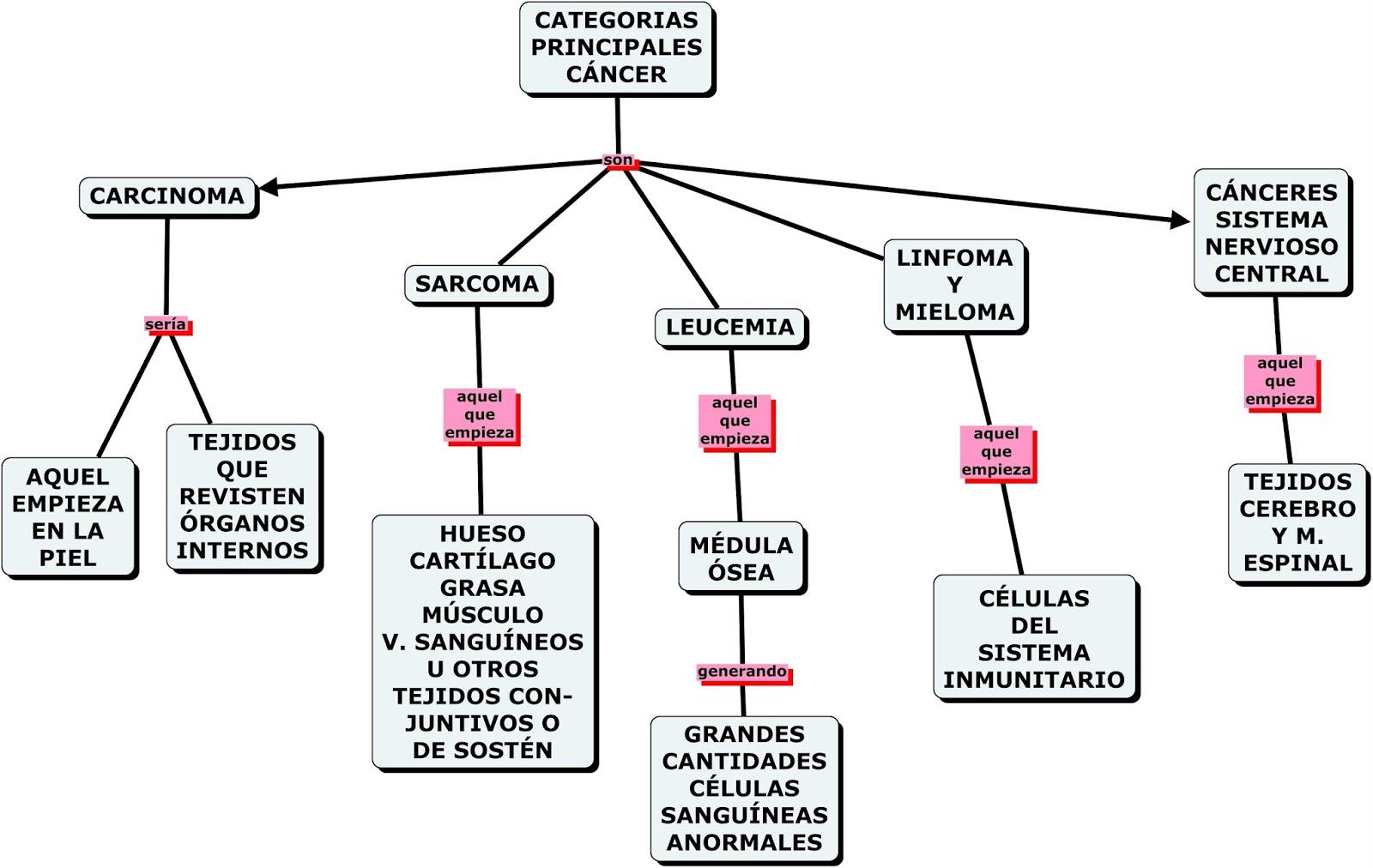 mapas conceptuales mind maps