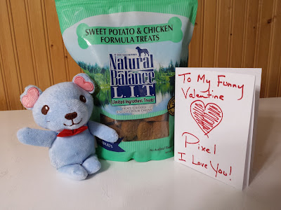 Image of Natural Balance dog treats, a new light blue squeaky toy and a hand-written card to Pixel from her Mom