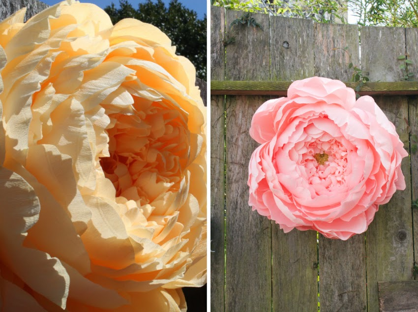 Giant closed crepe paper peony carte fini there was one innocently hanging in a tree with the other larger more open peonies when wedding season arrives everyone should have some giant flower mightylinksfo