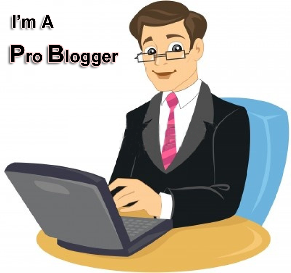 How can you say that you are a Pro Blogger
