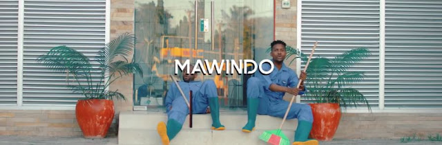 Nikki Wa Pili Ft Gnako - Mawindo Video