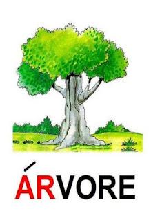 Cartaz sílaba complexa árvore
