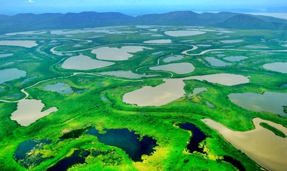 Parque Nacional do Pantanal | Mato Grosso e Mato Grosso do Sul