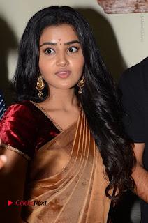 Actress Anupama Parameswaran Stills in Silk Saree with Shatamanam Bhavati Team at Sandhya Theater  0008.JPG