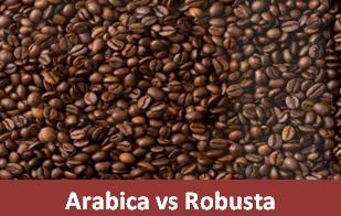 Perbedaan Kopi Arabica dan Robusta Yang Belum Anda Ketahui