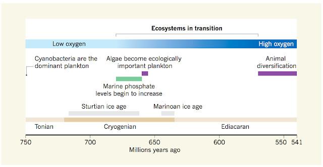 पृथ्वी में जीवन की शुरुआत कैसे हुई थी