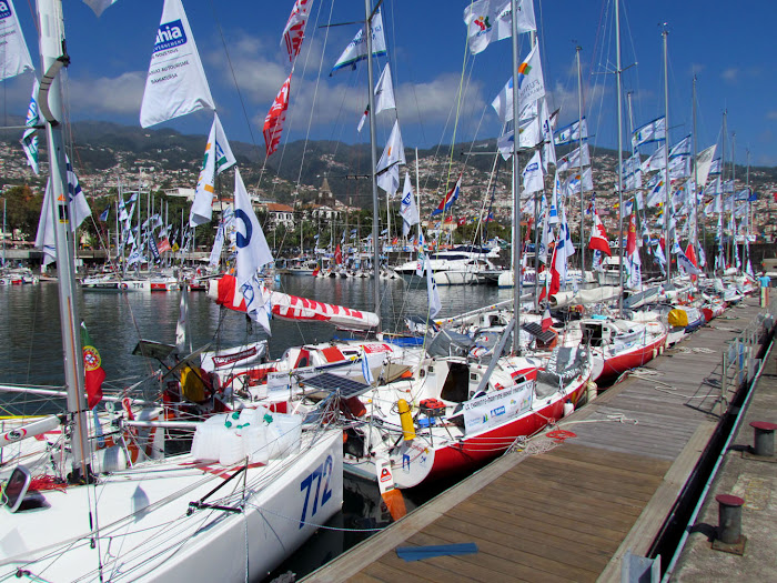 sailing boats in Funchal Marina
