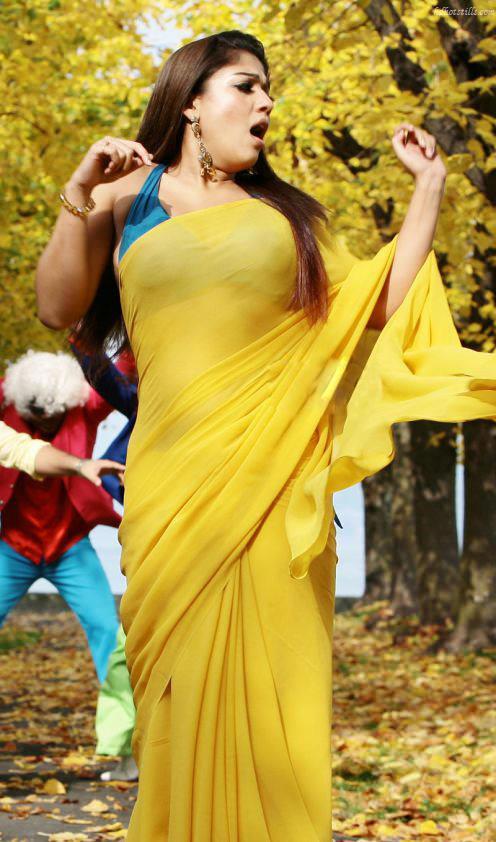 Nayanthara Hot Stills In Saree Photos - Indian Actress -4359