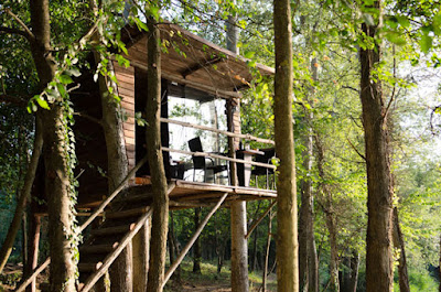 costruire-una-casa-sull-albero