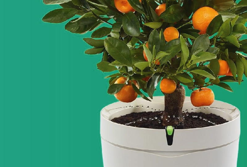 vaso wireless smart