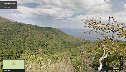 Google Lat Long: Explore Gombe National Park through the eyes of Dr. Jane Goodall