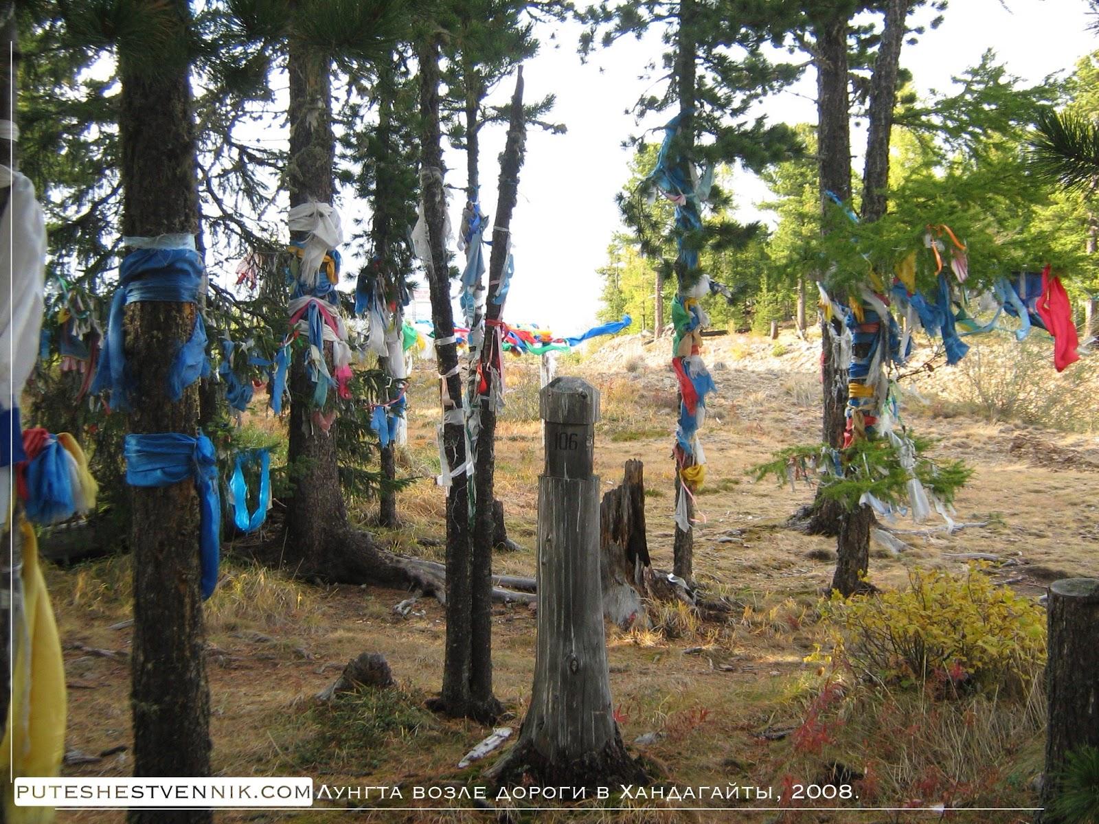 Буддийские флажки на деревьях