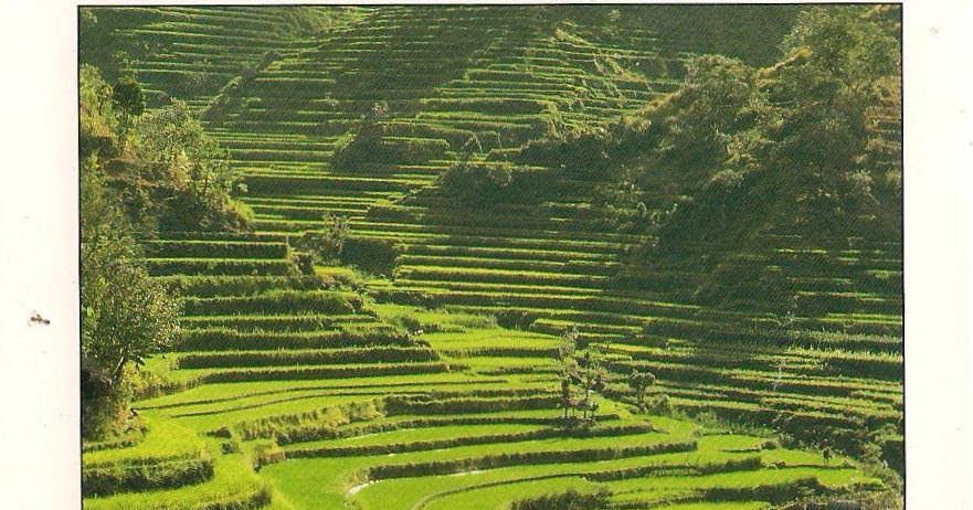 MY UNESCO WHS POSTCARDS COLLECTION: INDONESIA  Cultural Landscape of Bali Province: the Subak