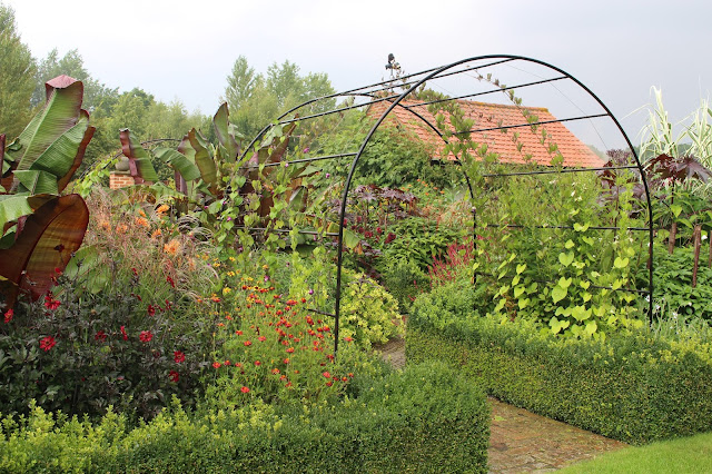 Exotic garden at Ulting Wick