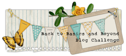Back to Basics and Beyond Challenge