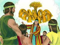 Йосиф видя сън и го разказа на братята си, и те го намразиха още повече.